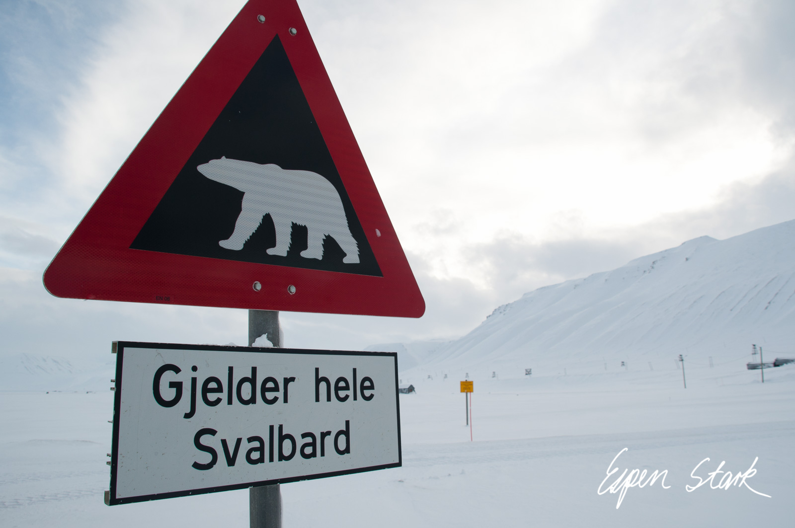 0311_SvalbardNatur_008.jpg