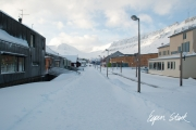 0311_SvalbardNatur_001.jpg