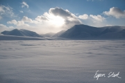 0311_SvalbardNatur_023.jpg