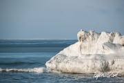 0311_SvalbardNatur_040.jpg