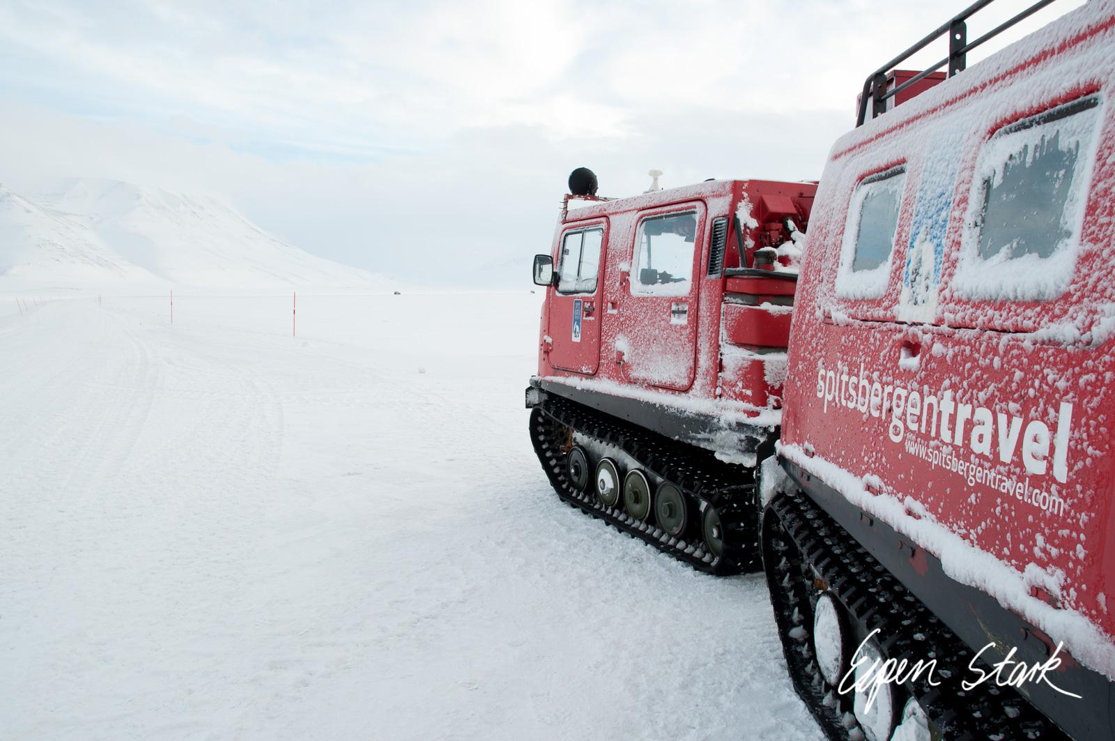 0311_SvalbardNatur_012.jpg