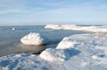 0311_SvalbardNatur_032.jpg