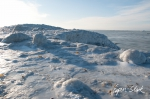 0311_SvalbardNatur_035.jpg