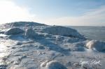 0311_SvalbardNatur_036.jpg